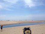 28 Dunes Beach