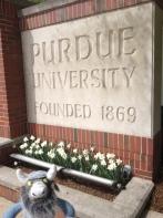 5 Purdue